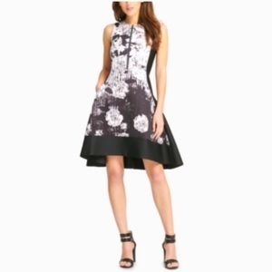 DKNY   NWT Fit and Flare Graphic Scuba Dress